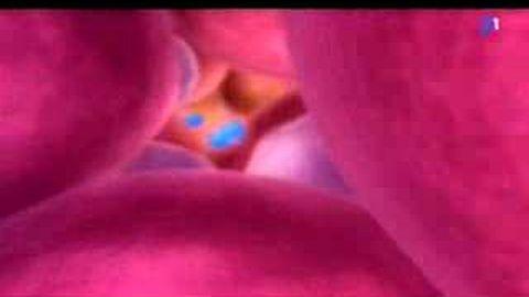 Un nouveau vaccin contre le cancer du col de l'utérus