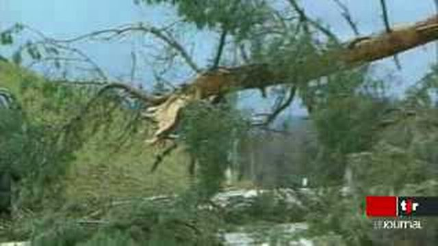 Retour sur l'ouragan Lothar qui dévastait une partie de l'Europe et de la Suisse il y a 10 ans