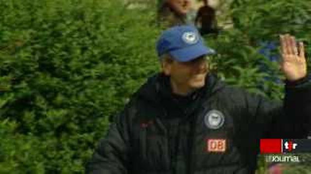 Football: Lucien Favre est débarqué du Herta Berlin