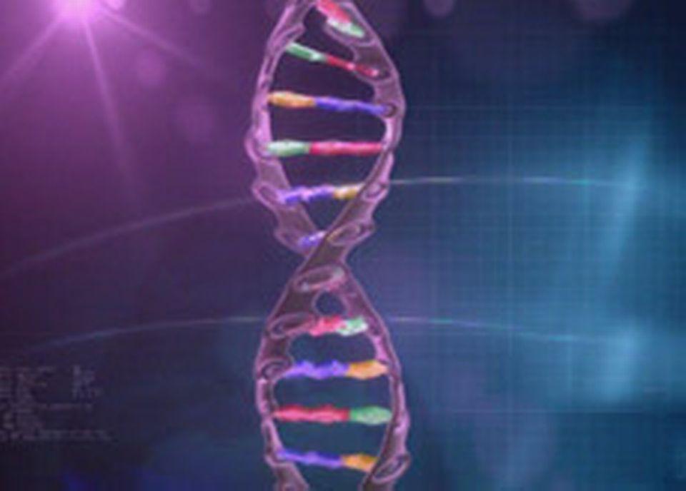 L'expression de nos gènes est influencée par notre alimentation