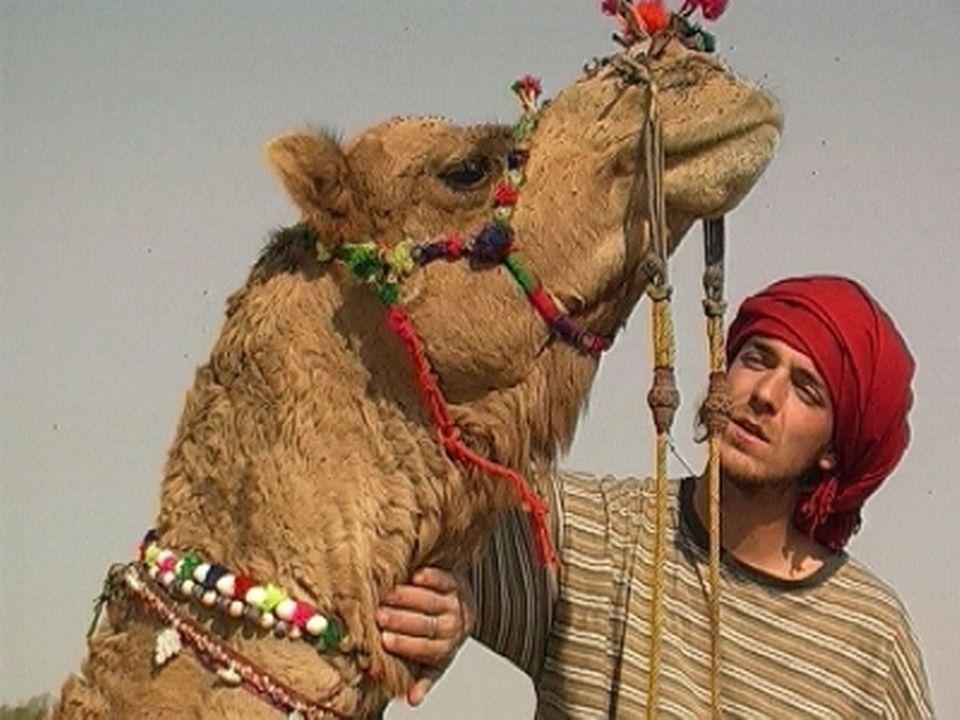 A suivre : Gaël le nomade