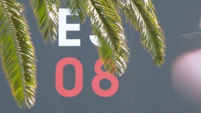 La palme 2008 [dominique willemin      - rsr]