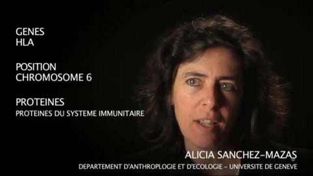 Les gènes HLA par Alicia Sanchez-Mazas