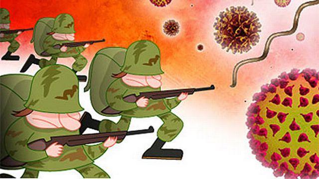 Le système de défense apprend à lutter contre les envahisseurs (© L'internaute)