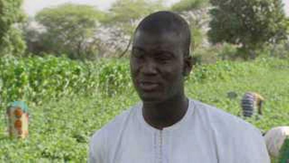 La production de haricots au Sénégal