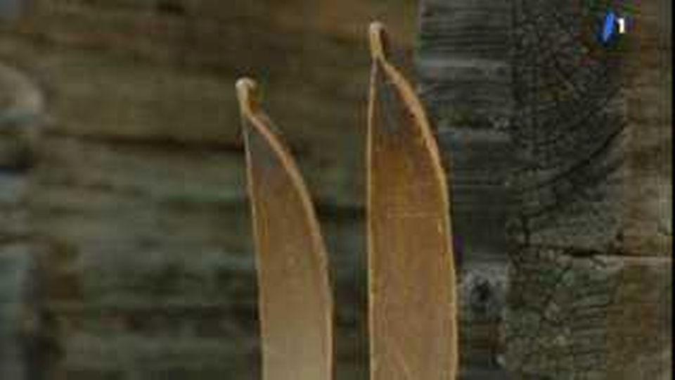 emissions test skis abe planche sur les spatules. Black Bedroom Furniture Sets. Home Design Ideas