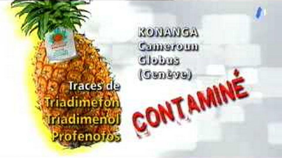 Pesticides et engrais, des ananas contaminés