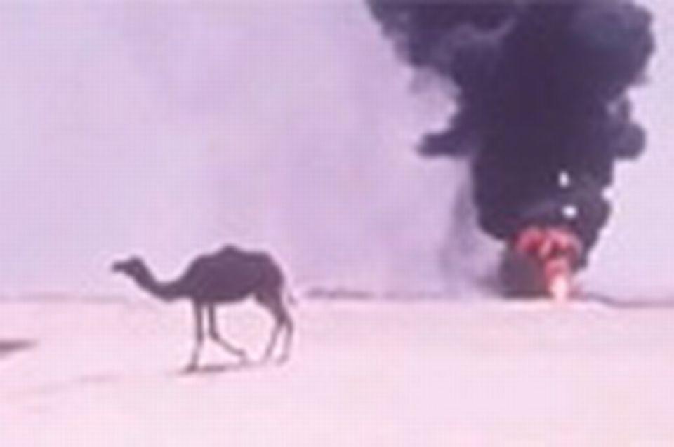 Arabie