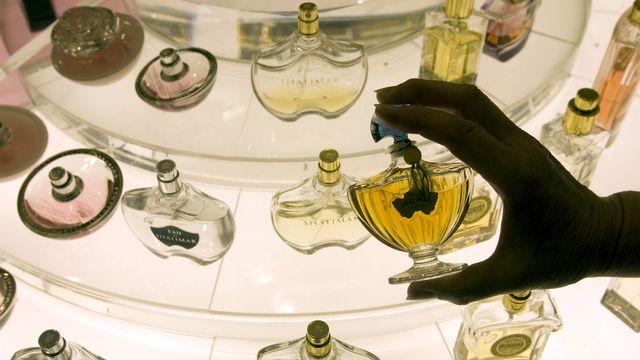 Chaque année, des centaines de parfums sortent sur le marché mondial. [Reuters]