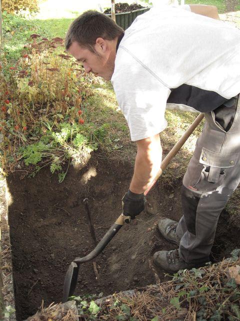 1a cr er un milieu propice xavier bloch rts - Comment planter un rhododendron ...