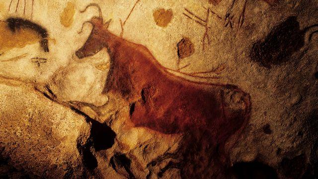 Peinture rupestre des grottes de Lascaux en France. [Marc Dozier - AFP]