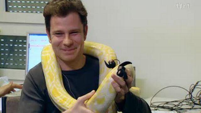 Expression physiologique de la peur devant un python