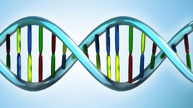 Une partie des maladies dites orphelines sont d'origine génétique. [tose / fotolia]
