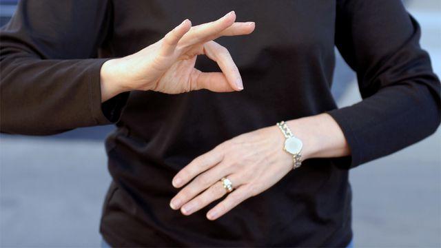 Malgré une version internationale utilisée lors de conférences, la langue des signes n'est pas universelle. lawcain fotolia [lawcain - Fotolia]