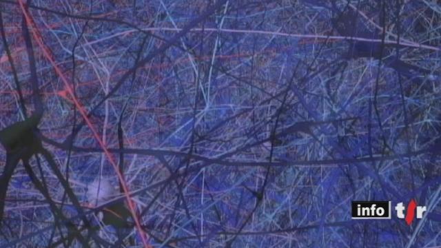 Grand format: des chercheurs de l'EPFL tentent de modéliser un cerveau humain en trois dimensions