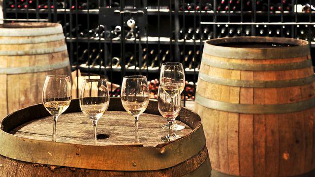 Entrez dans le monde mystérieux du vin. [Elenathewise - Fotolia]