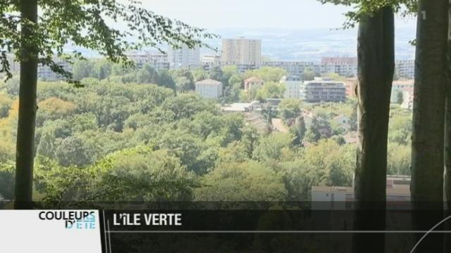 Lausanne (VD): ville et forêt coexistent grâce à un important travail de régulation