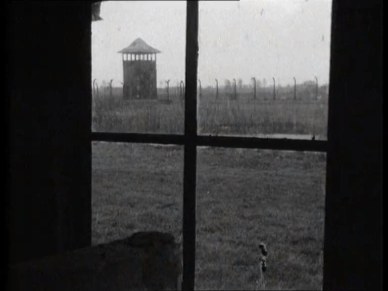 La réalité des camps nazis