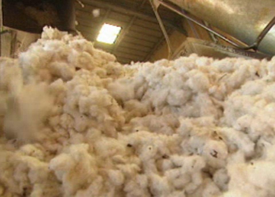 Le coton fare-trade