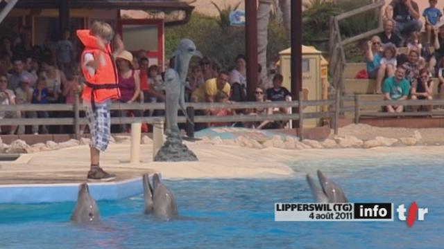 TG : mardi passé, un dauphin est mort sans raison apparente dans l'unique delfinarium de Suisse, près du lac de Constance