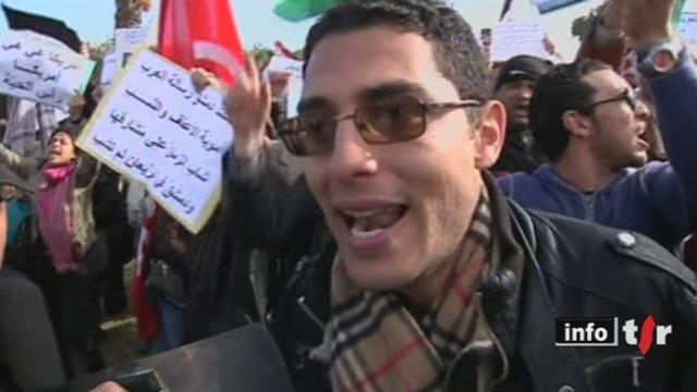 La ligue arabe appelle l'ONU à faire respecter un cessez-le-feu immédiat en Syrie