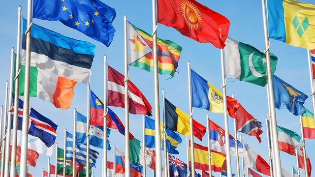 Drapeaux des pays européens. [sinuswelle - Fotolia]