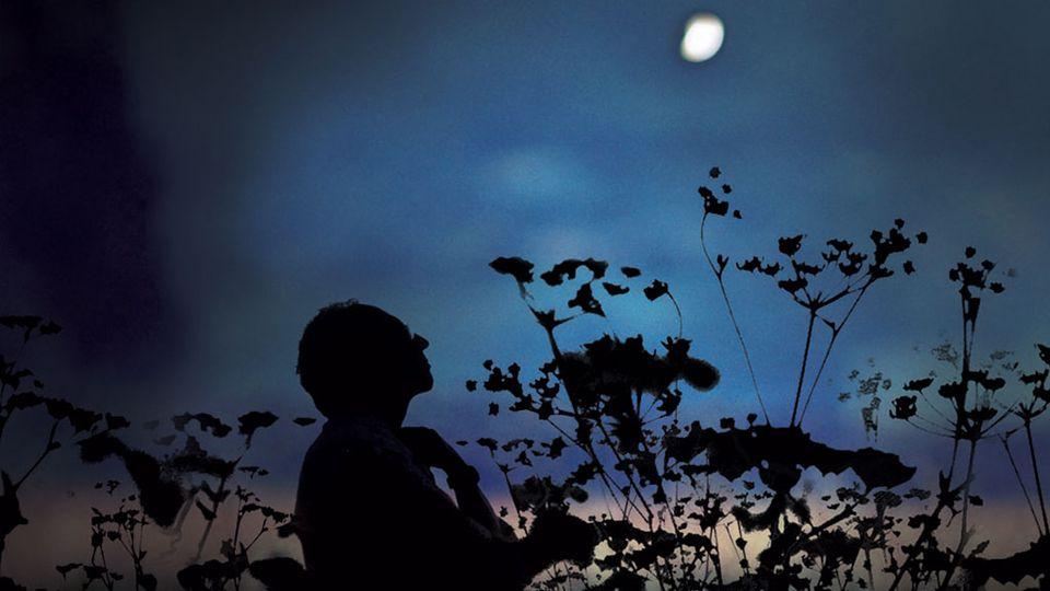 Philippe Grand dans sa friche au clair de lune [RTS]