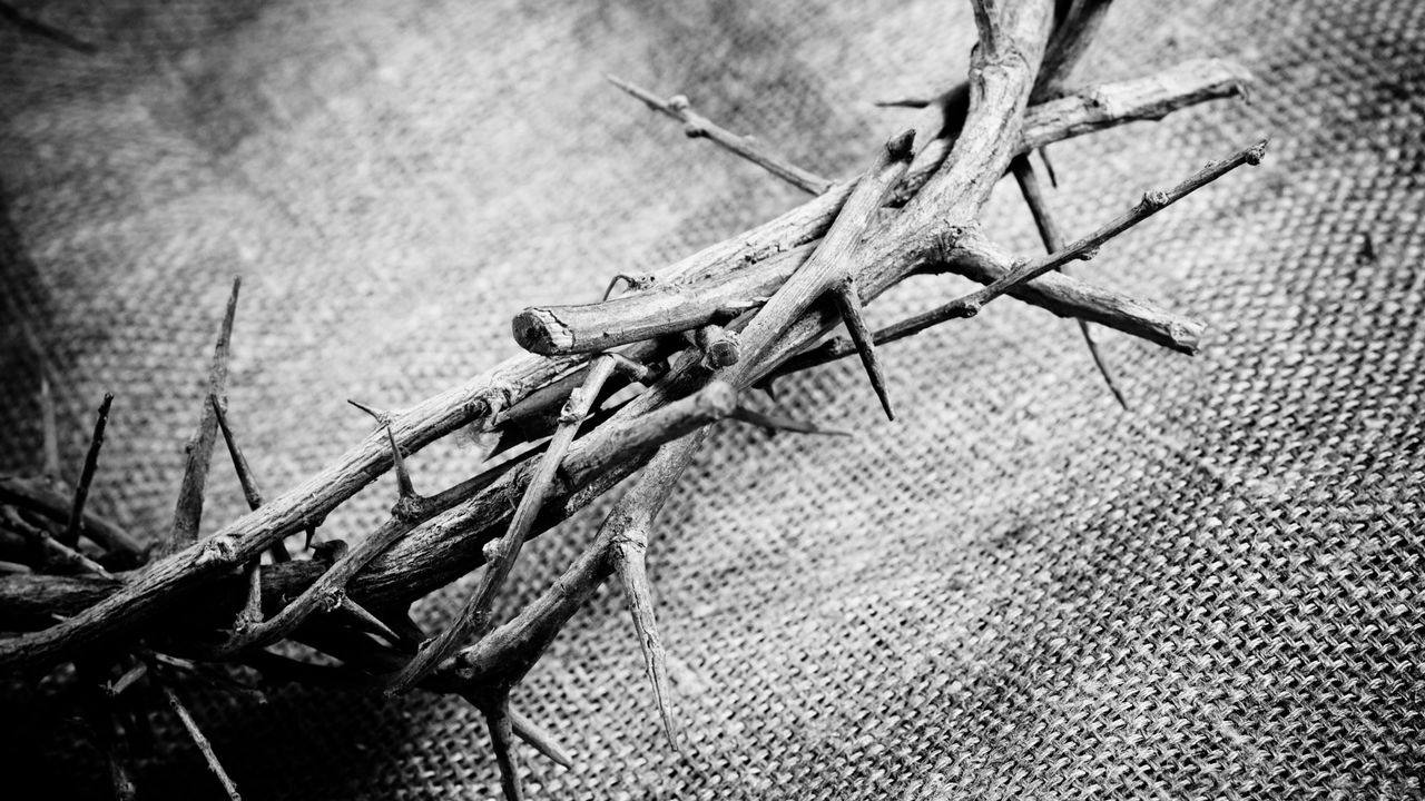 Célébration de la résurrection du Christ. [Dmitriy Shpilko - Fotolia]