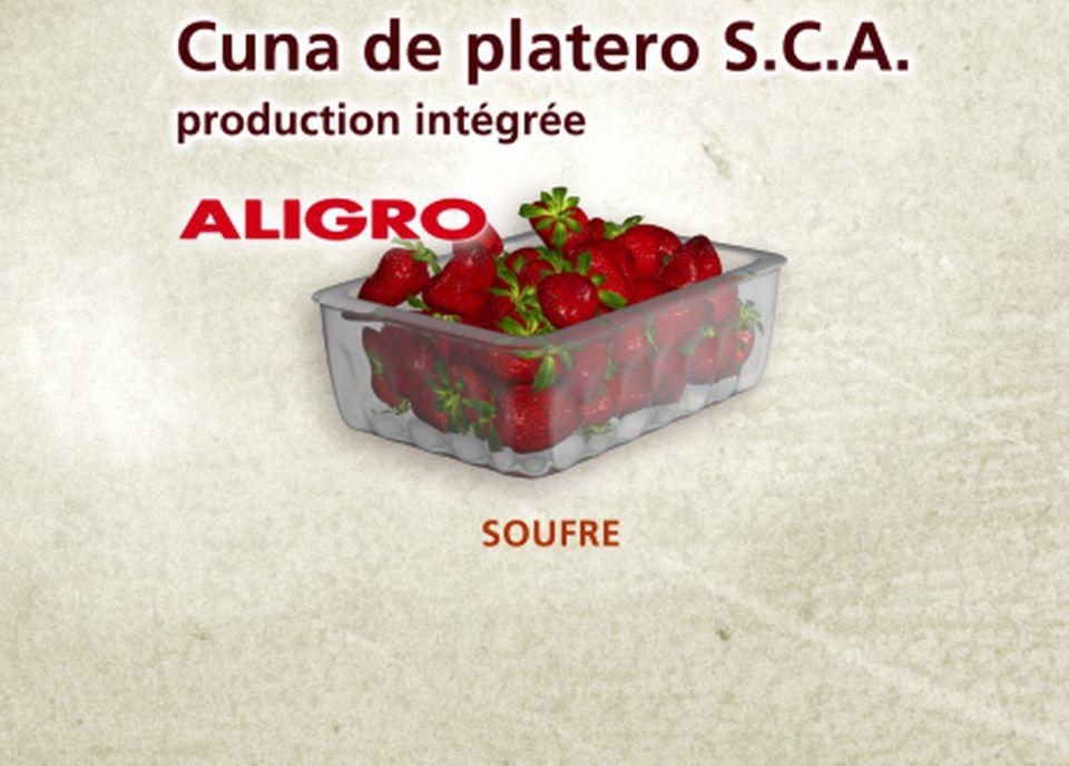 Cuna de platero S.C.A. chez Aligro [Capture d'écran - RTS]
