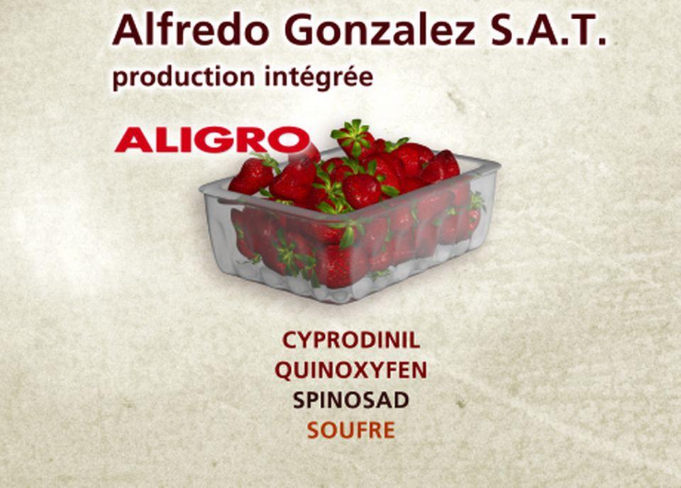 Alfredo Gonzalez S.A.T. [Capture d'écran - RTS]