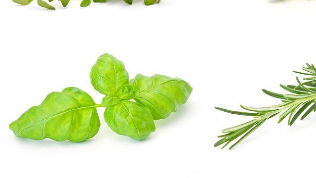 Des nombreux produits agricoles sont importés en Suisse, en provenance des colonies israéliennes, comme les fines herbes ou les avocats. [Fotolia]