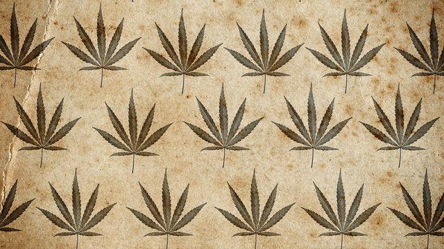 Histoire de cannabis. [Taigi  - Fotolia]