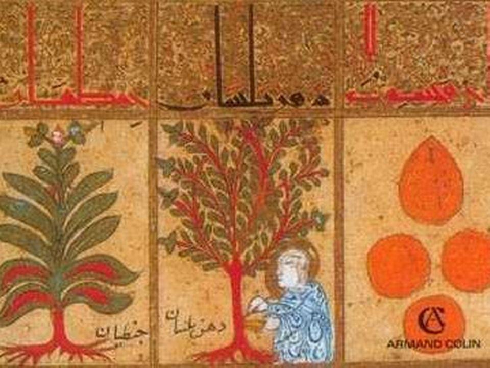 André Miquel: L'islam et sa civilisation (Armand Colin) [Illustration de couverture de L'islam et sa civilisation d'André Miquel (éd. Armand Colin)]