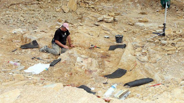 Les archéologues nettoient les fossiles d'ossements du Atsinganosaurus velauciensis. [VILLE DE VELAUX - AFP]