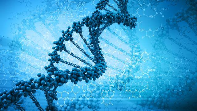 Les gènes ont une influence sur la manière dont l'humain réagit aux virus. [Adimas - Fotolia]