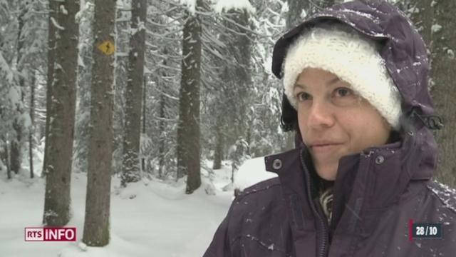 Le manteau neigeux était très important dans le Jura dimanche
