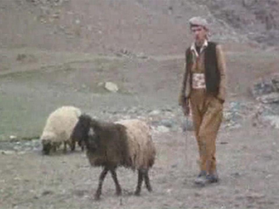 """Au Kurdistan irakien"". [RTS]"