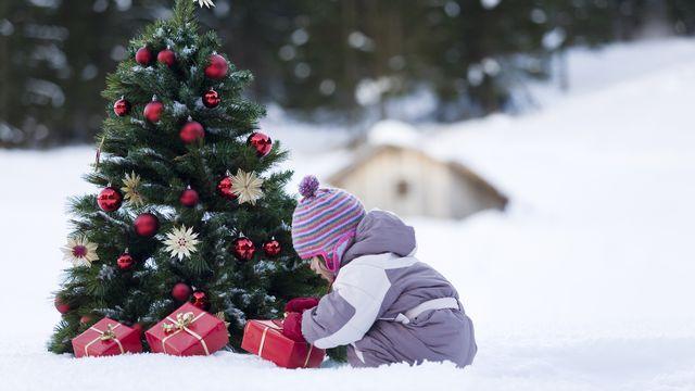 De nombreux disques seront à coup sûr déposés sous le sapin de Noël. [Frédérique Bidault - Biosphoto]