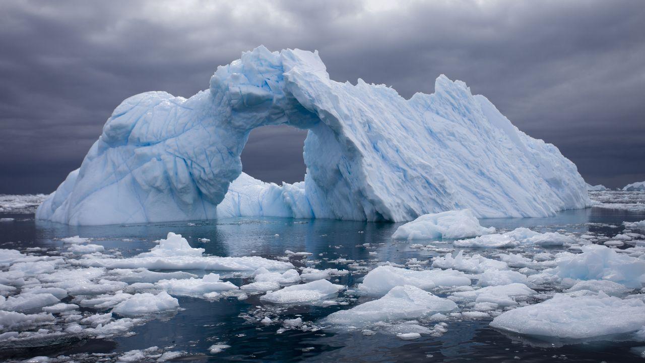 12 24 antarctique afp [Biosphoto/Samuel Blanc - AFP]