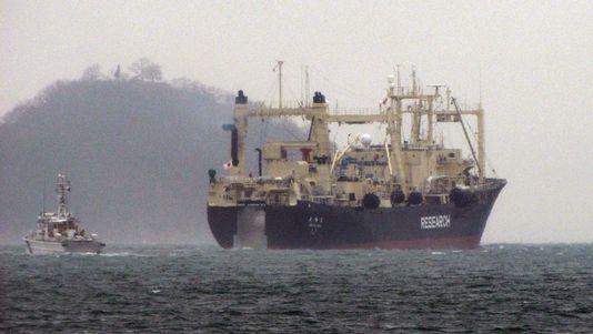 Les baleiniers japonais de retour en Antarctique 4538668