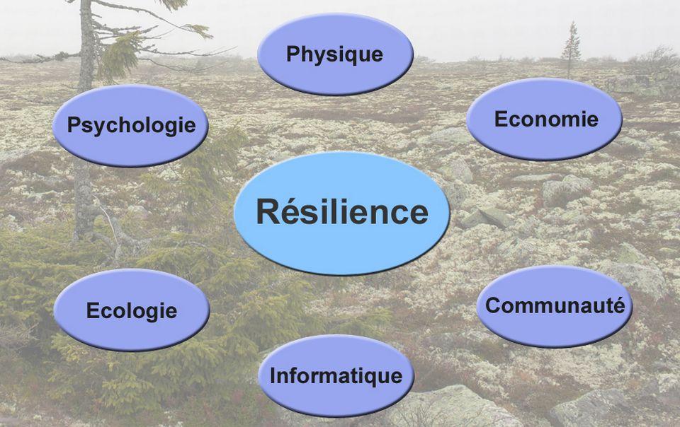 Infographie sur la résilience. [RTS]