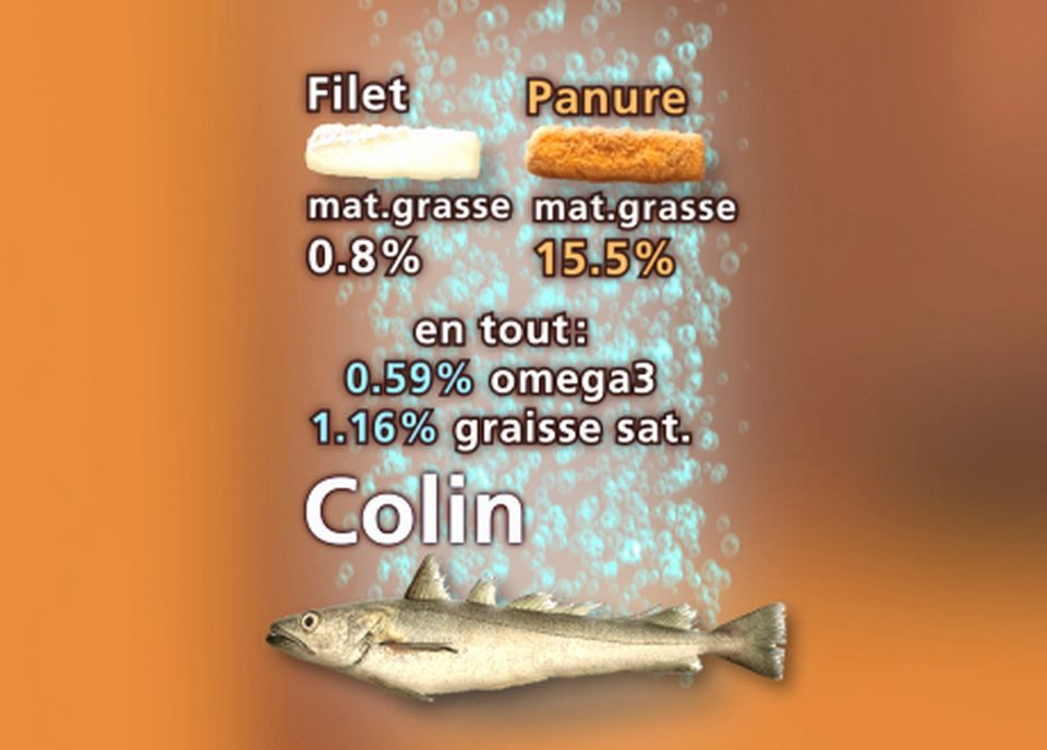 Le colin. [Stephan Fell - RTS]
