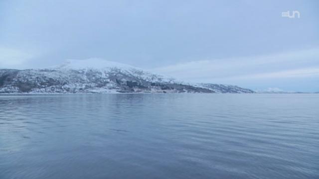 La morue haut de gamme se trouve en Norvège