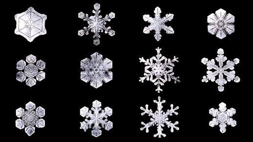 La formation d un cristal de neige d couverte - Vrai flocon de neige ...