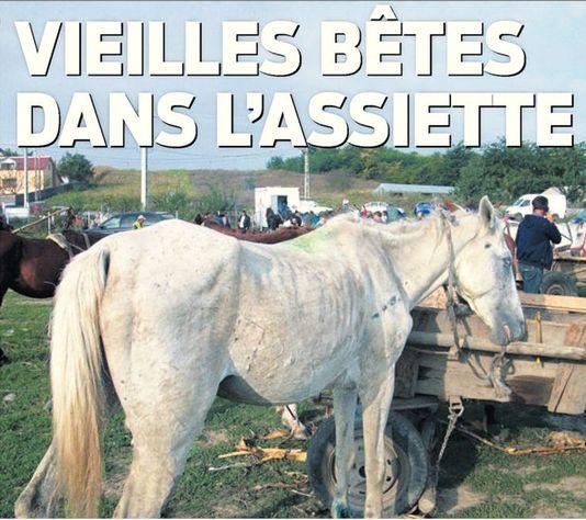 Surgelés au cheval roumain: vieilles bêtes dans l'assiette, titre Le Matin en Une. [Le Matin]