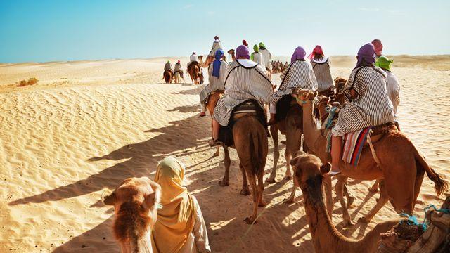 Vignette Sahel [© adisa - Fotolia]