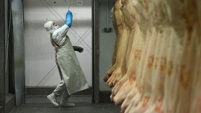 Un travailleur dans un entrepôt de viande de cheval roumain. [Daniel Mihailescu - AFP]