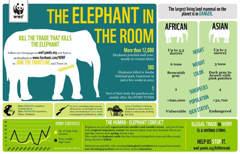 Infographie de sensibilisation du WWF pour la sauvegarde des éléphants. [WWF]