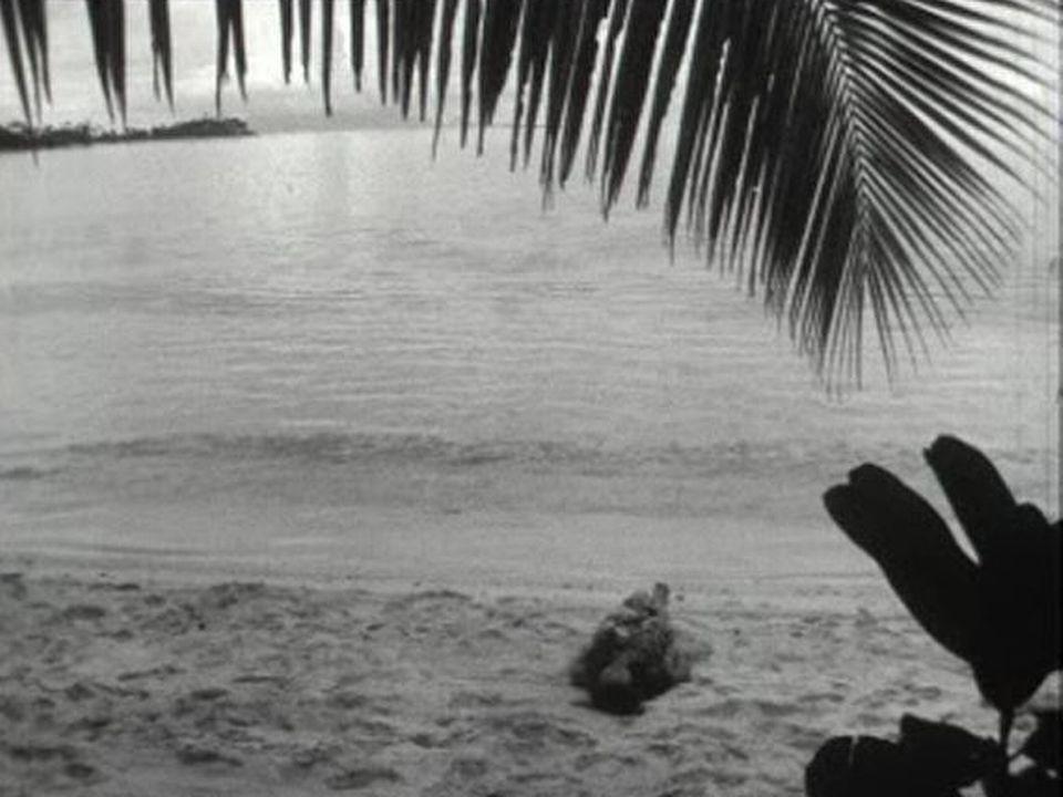 Tahiti4 [TSR 1962]