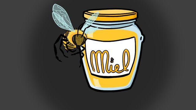 RTS découverte: comment les abeilles font-elles le miel? [RTS]